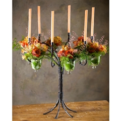 Wrought Iron 6-Vase Candelabra by Bella Toscana